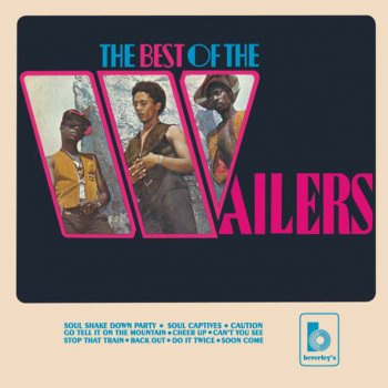 Testi The Best of the Wailers