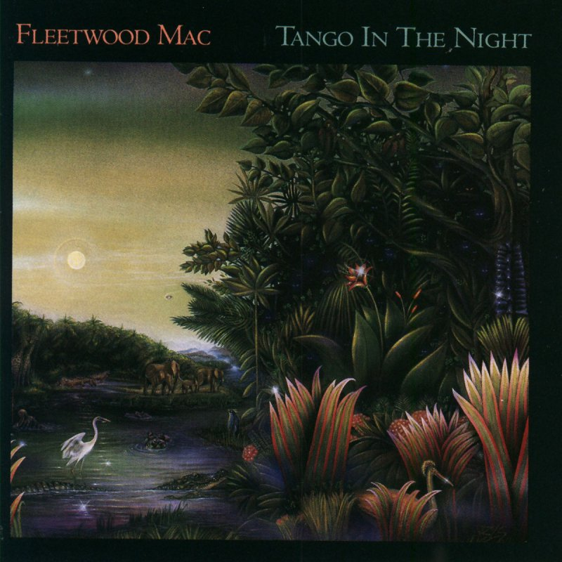 Missing lyrics by Fleetwood Mac?