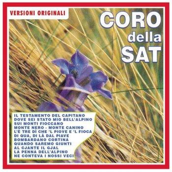 La penna dell alpino (Canto degli alpini) (Testo) - Coro Della S.At ... e0a87e6f812c