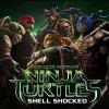 Shell Shocked lyrics – album cover