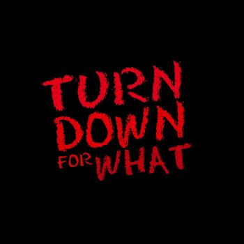 Turn Down for What (Remix) [In the Style of DJ Snake, Lil ...