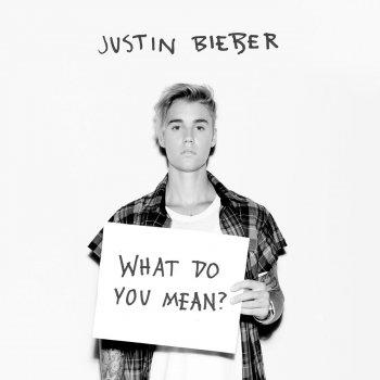 Testi What Do You Mean?