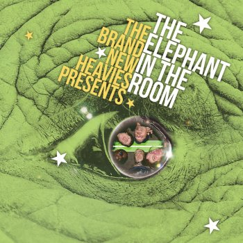Testi THE BRAND NEW HEAVIES presents THE ELEPHANT In The Room