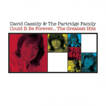 David Cassidy - I Write The Songs / Get It Up For Love