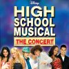 High School Musical: The Concert Various Artists - cover art