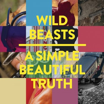Testi A Simple Beautiful Truth