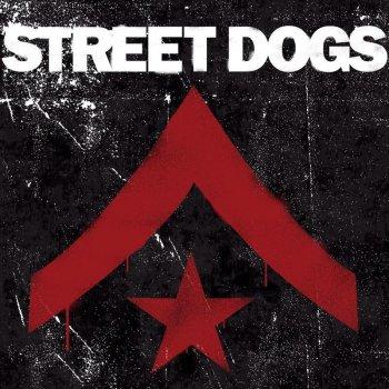 Testi Street Dogs