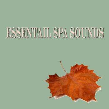 Testi Essential Spa Sounds