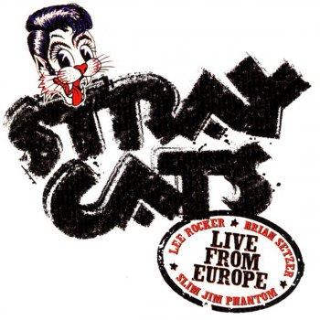 Testi Live from Europe: London July 18, 2004
