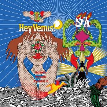 Testi Hey Venus!