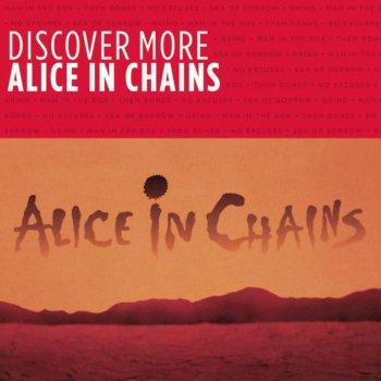 Testi Discover More: Alice In Chains