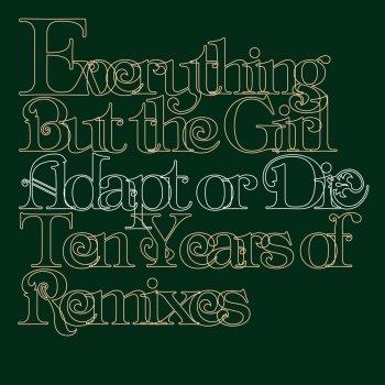 Testi Adapt or Die - Ten Years of Remixes