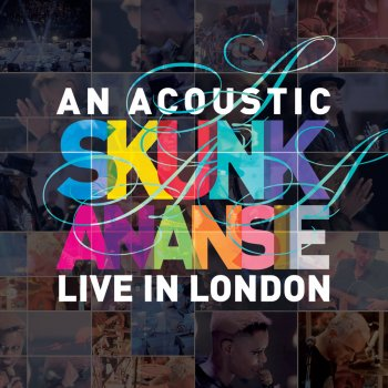 Testi An Acoustic Skunk Anansie - Live in London