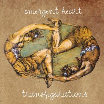 Testi Transfigurations