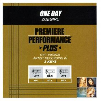 Testi Premiere Performance Plus: One Day