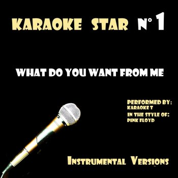 Testi What do you want from me (in the style of Pink Floyd) [Karaoke Versions]