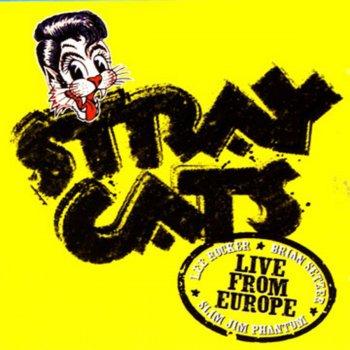 Testi Live from Europe: Turku July 10, 2004