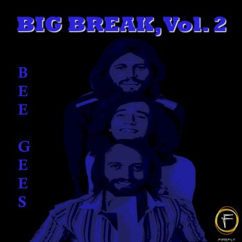 Testi Big Break, Vol. 2