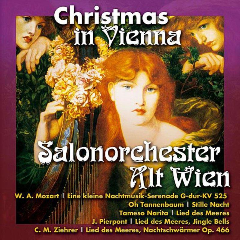 Tannenbaum Lied.Salonorchester Alt Wien Lied Des Meeres Lyrics Musixmatch