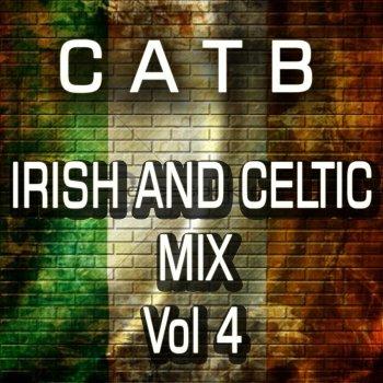 Testi Irish and Celtic Mix, Vol. 4