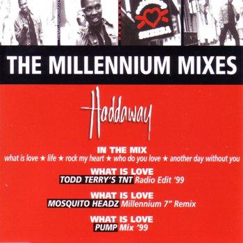 Testi The Millenium Mixes