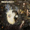 Graffiti On The Train (Deluxe Edition) Stereophonics - cover art