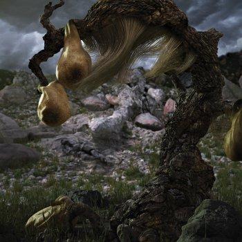 Testi Quasimodo's Dream