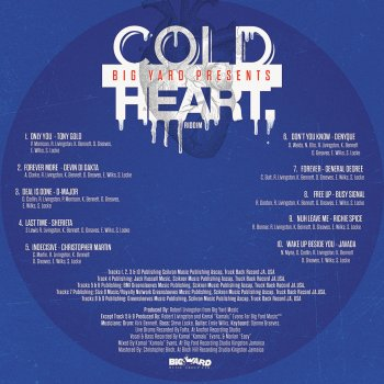 cold heart riddim mp3lio