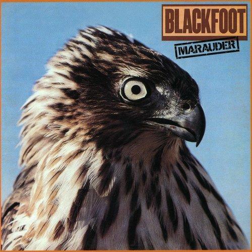 Blackfoot - Dry County Lyrics