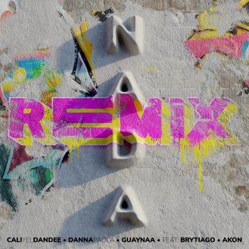 Testi Nada (Remix) [feat. Brytiago & Akon] - Single