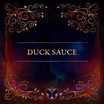 Testi Tomorrowland 31.12.2020: Duck Sauce (DJ Mix)
