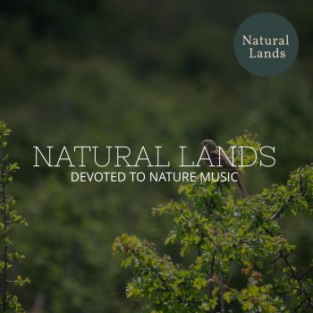 Testi Natural Lands - Devoted to Nature Music