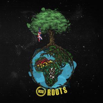 Testi Roots