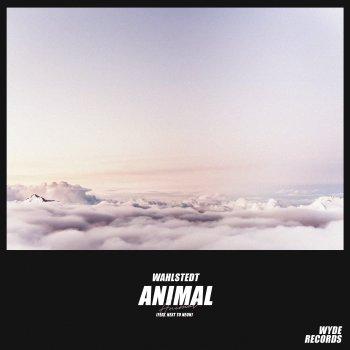 Testi Animal (feat. Next to Neon) - Single