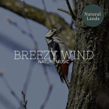 Testi Breezy Wind - Nature Music
