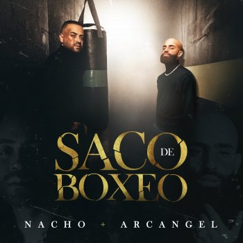 Testi Saco De Boxeo - Single