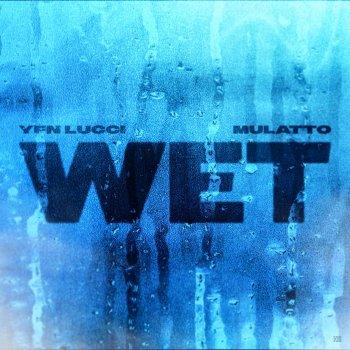 Testi Wet (feat. Mulatto) [Remix]