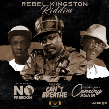 Testi Rebel Kingston Riddim - Single