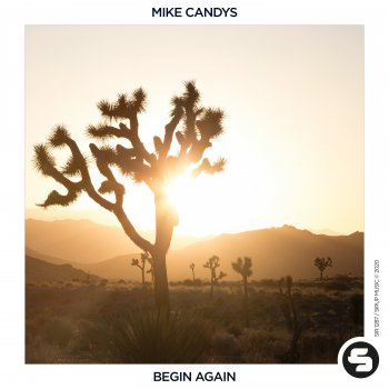 Testi Begin Again - Single