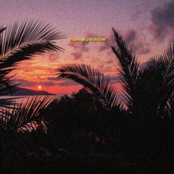 Testi Tropical Paradise