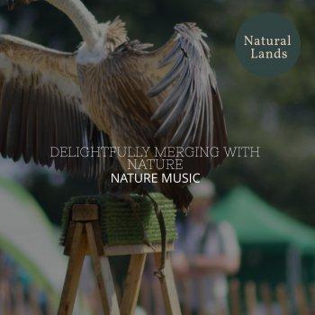 Testi Delightfully Merging with Nature - Nature Music