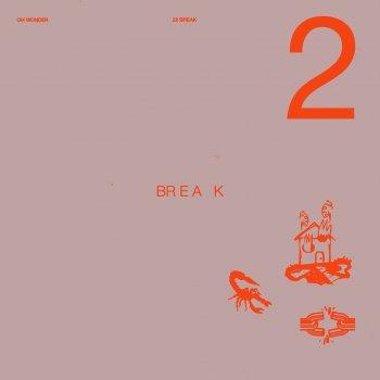 Testi 22 Break
