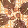 Black Hyena lyrics – album cover