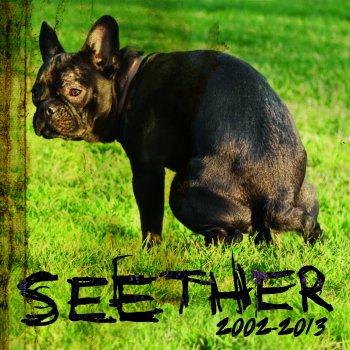 Testi Seether: 2002-2013