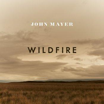 Testi Wildfire