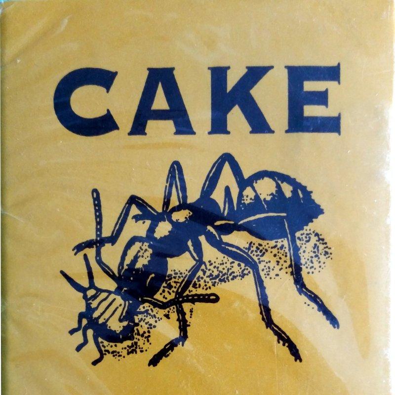 Cake - Jolene Lyrics   Musixmatch