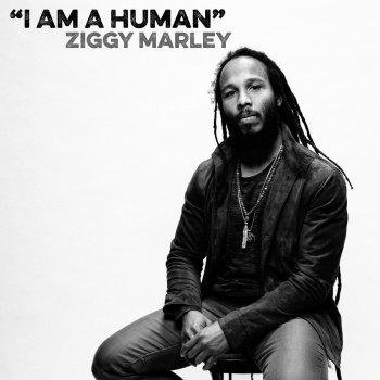 Testi I Am a Human