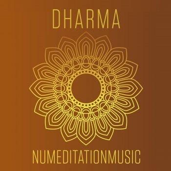 Testi Dharma