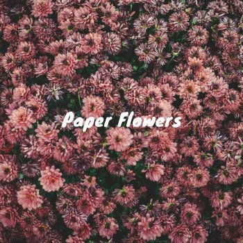Paper flowers by rendezvous at two album lyrics musixmatch song paper flowers rendezvous at two lyrics mightylinksfo