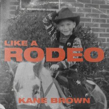 Testi Like a Rodeo - Single